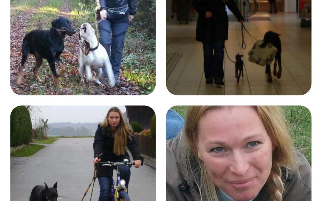 Hunde Hunde Hunde Bilder aus vergangenen Tagen... Wahnsinn wie lange jetzt Hunde...